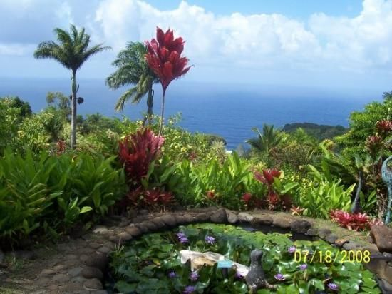 e46fb1d347b88cb603c499e134f54508 - Hana Maui Botanical Gardens Hana Hi