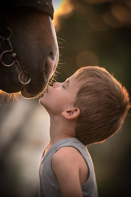Little boy kissing the nose of his horse. My last pin was a little girl kissing…