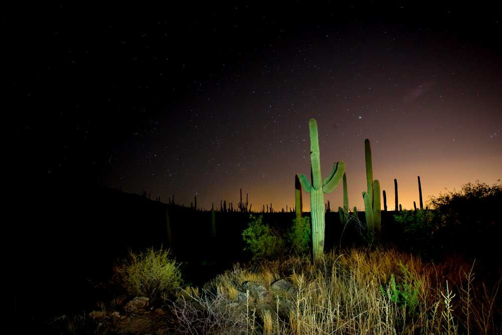 Starry sky at Tanque Verde Ranch Tanque verde, Natural