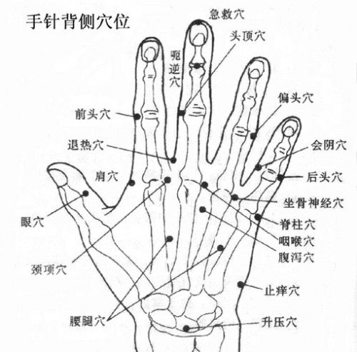 Pin by Foktau on 尋經点穴 | Acupunture, Acupressure points ...