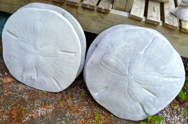 Sand Dollar Stepping Stones Courtyards Original