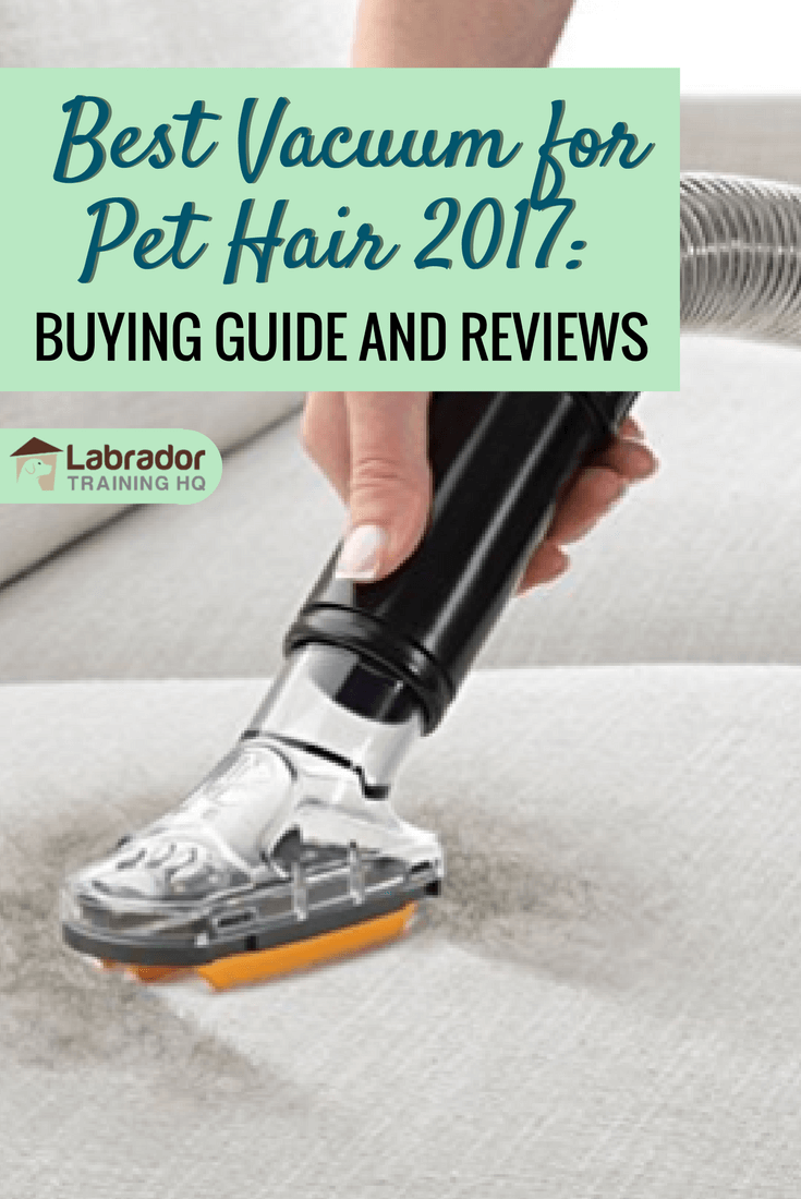 Best Vacuum For Pet Hair 2020 Buying Guide And Reviews Best Vacuum Pet Hair Vacuum Pet Hair