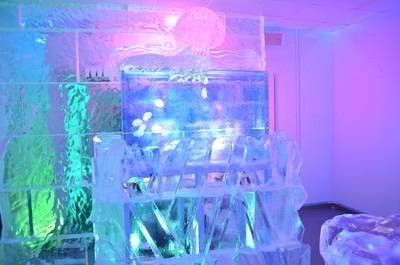 Crazy aquariums on tanked on animal planet ice bar for How to make ice in a fish tank