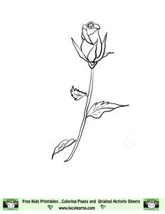 Single Long Stemmed Rose Rose Bud Tattoo Long Stem Flowers Rose Drawing Tattoo