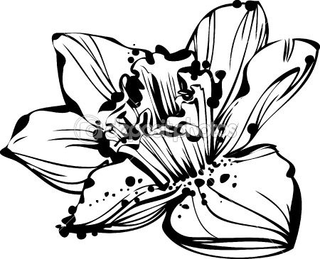 Black Line Flower Drawing : Simple design drawing at getdrawings free for personal use