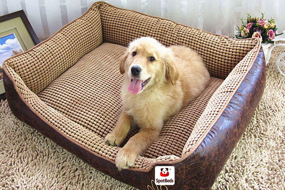 Spotbeds Extra Large Orthopedic Memory Foam Pet Dog Bed