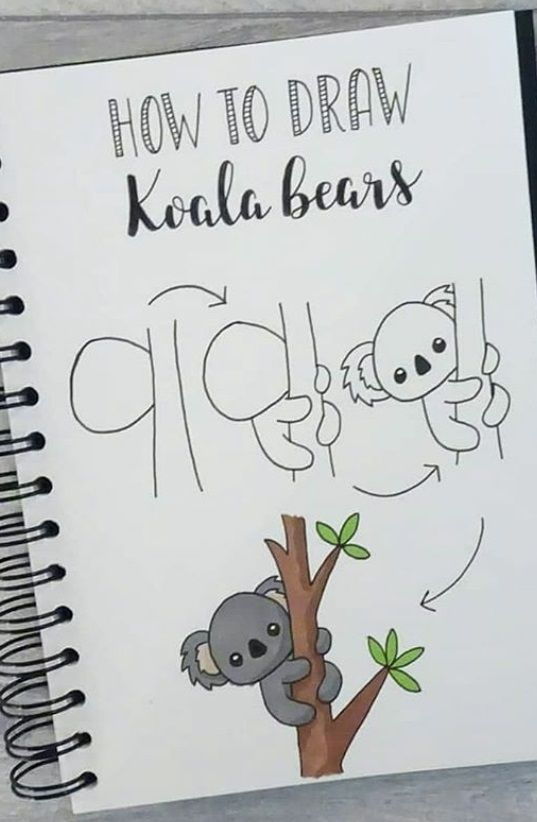 Photo of dibujo paso a paso koala