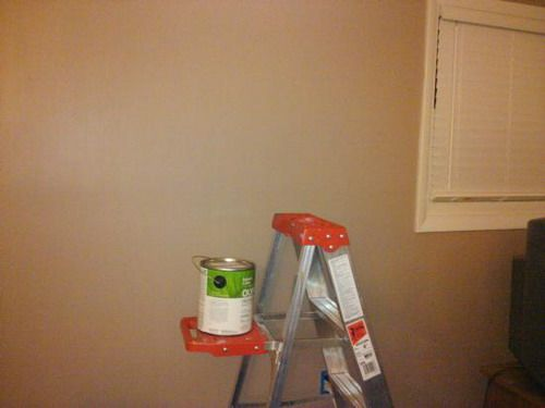 Medium Brown Eggshell Paint For The Walls Ideas