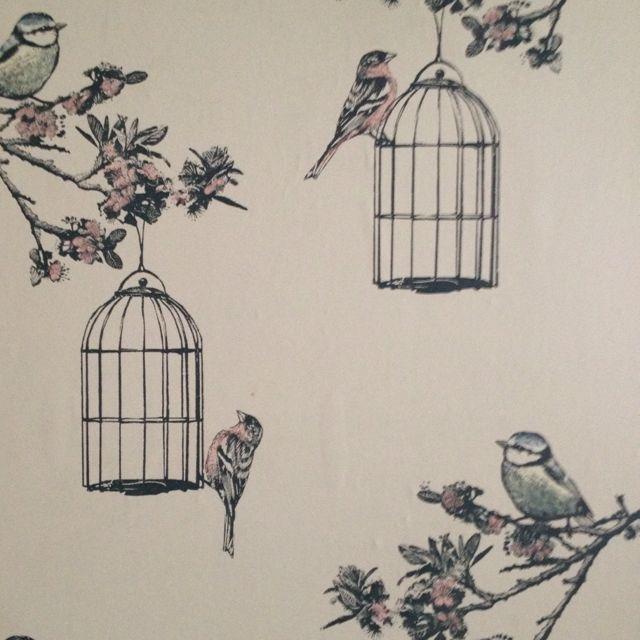 Nina Campbell Bird Cage Walk Wallpaper Wallpaper Wallpaper Accent Wall Bird Wallpaper