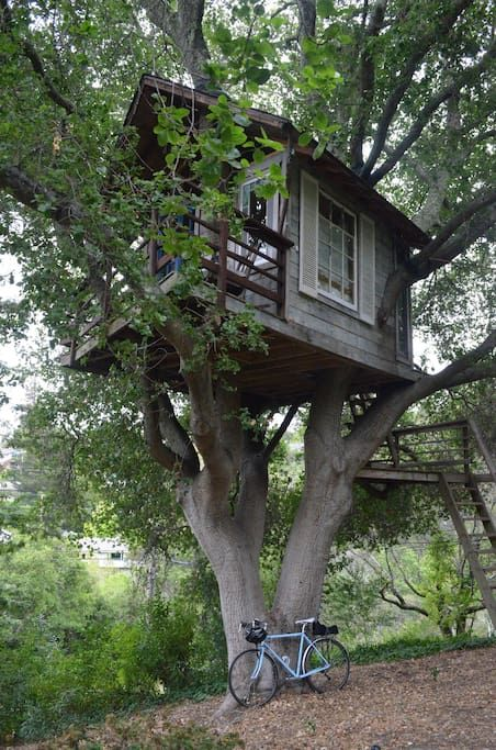 Treehouse above san francisco bay casas en el rbol en for Alquiler casa arbol