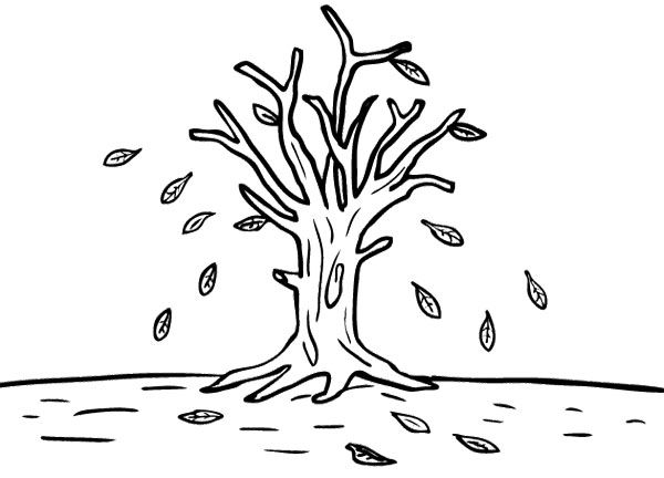 Tree Autumn Without Leaves Coloring Page