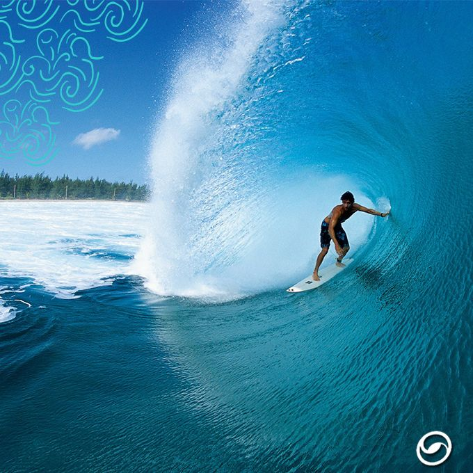 Pin by Ashley Renee on Surf   Pinterest   Surfing, Waves and Beach bd860eb206