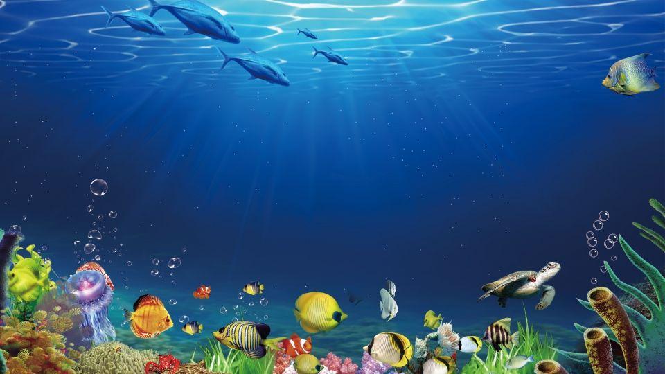 Fresh Ocean World Advertising Background Ilustracion Del Oceano Fondos De Colores Imagenes De Fondo