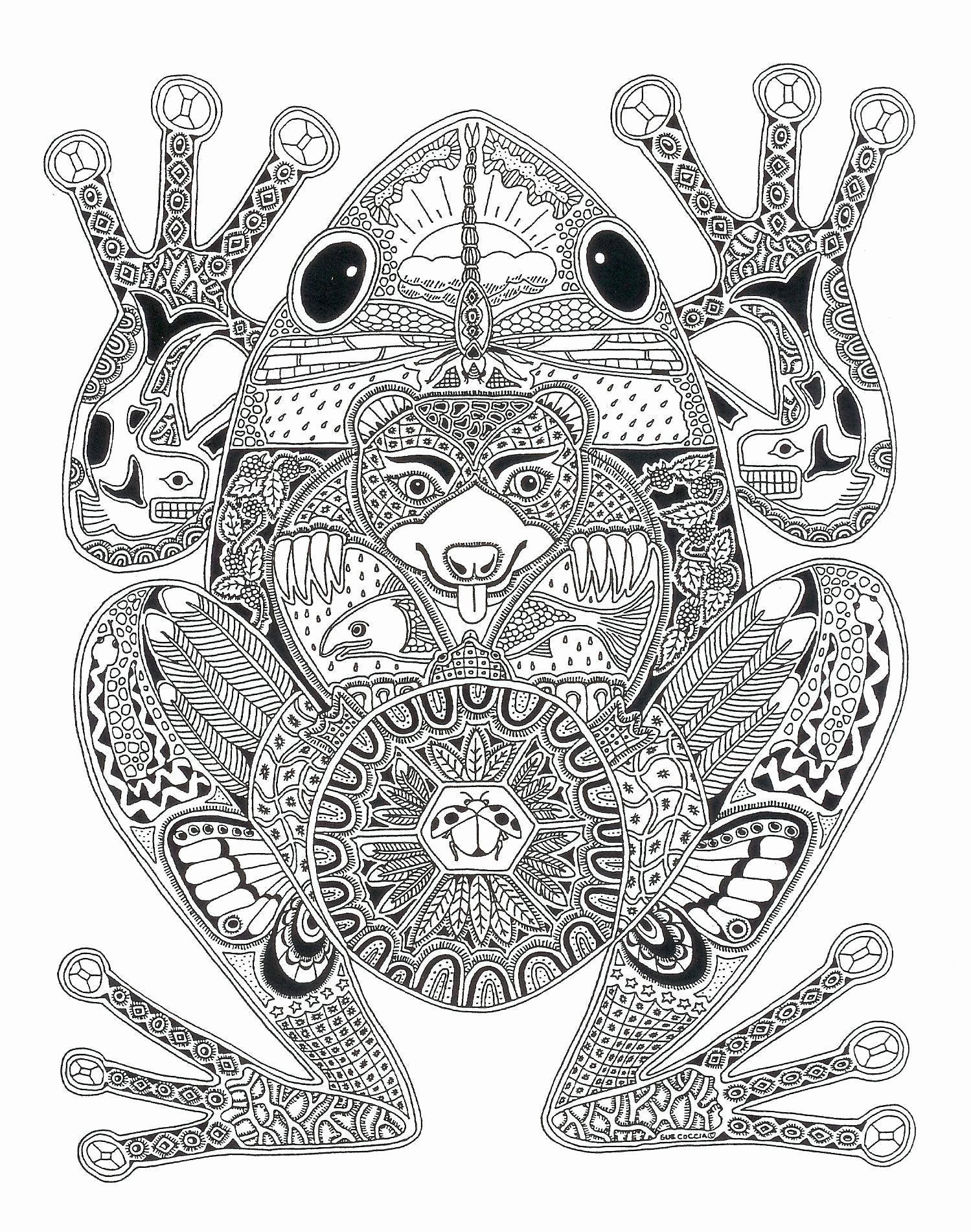Frog Adult Coloring Pages In