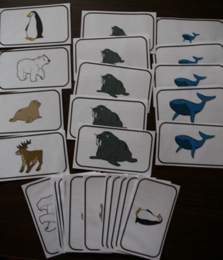 Les animaux polaires grand nord pol rn expres polar animals arctic animals a arctic - Animaux pole nord ...