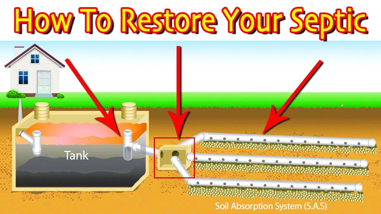 Restoring A Septic Drain Field First Steps (Least Vs