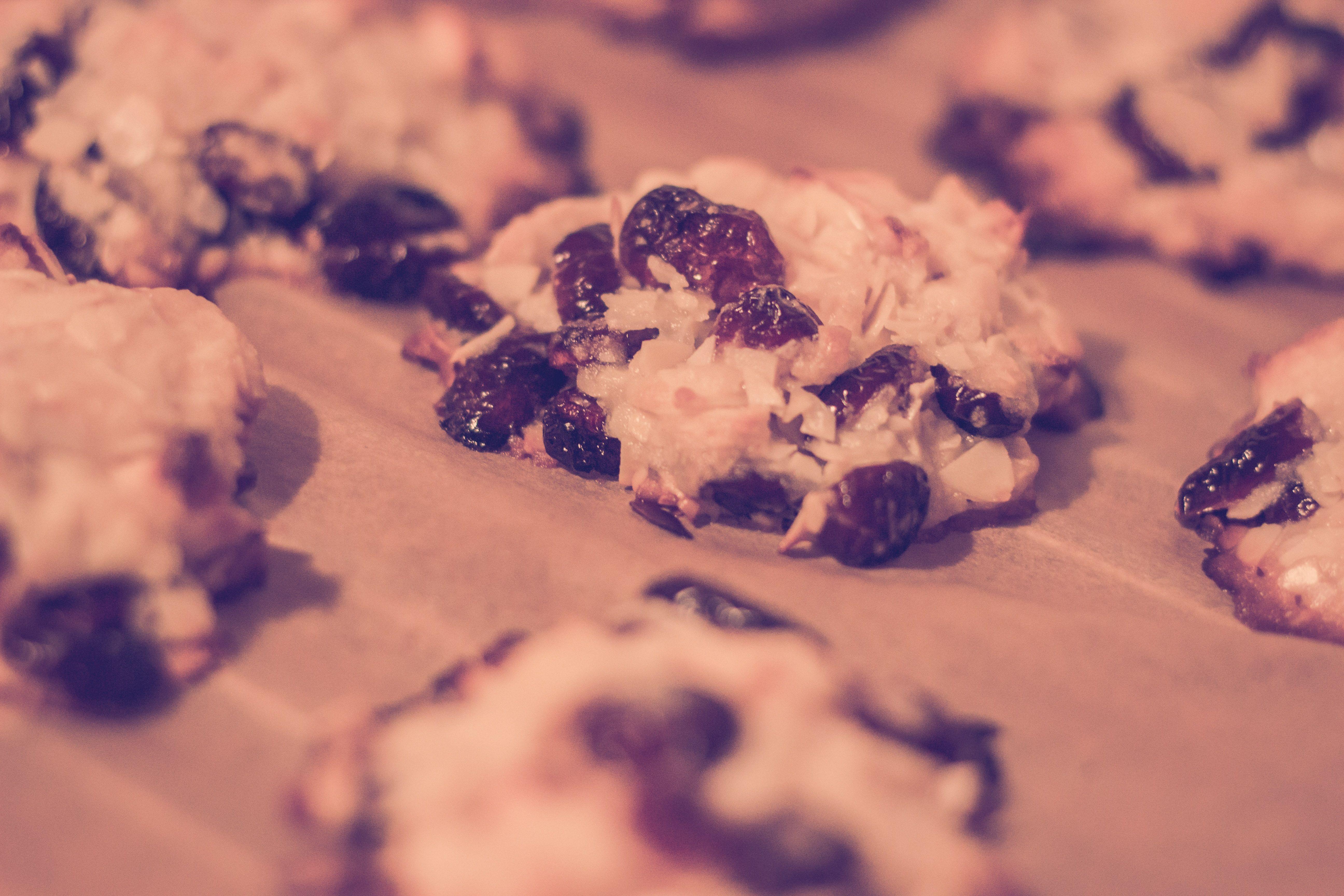 cranberry florentines, almonds, vegan, baking, cookies