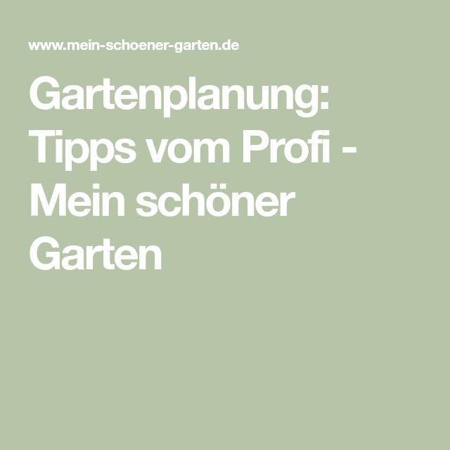 Profi-Tipps für die Gartenplanung #beetanlegen