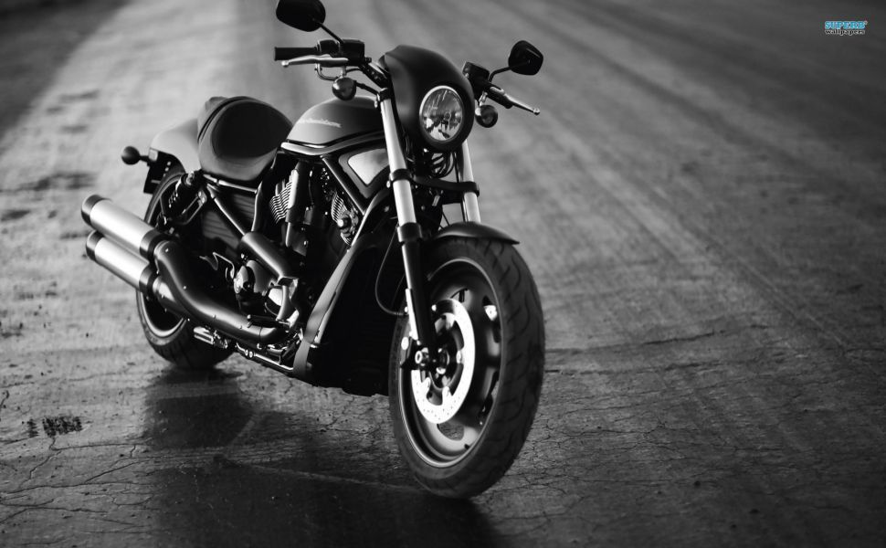 Harley Davidson Vrscdx Night Rod Special Hd Wallpaper Harley Davidson Wallpaper Harley Davidson Photos Harley Davidson Images