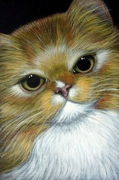 Pin by Ellen Bounds on CUTE CATS TO PAINT ON ROCKS   Cat ...