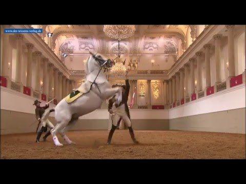 Das Weiße Ballett