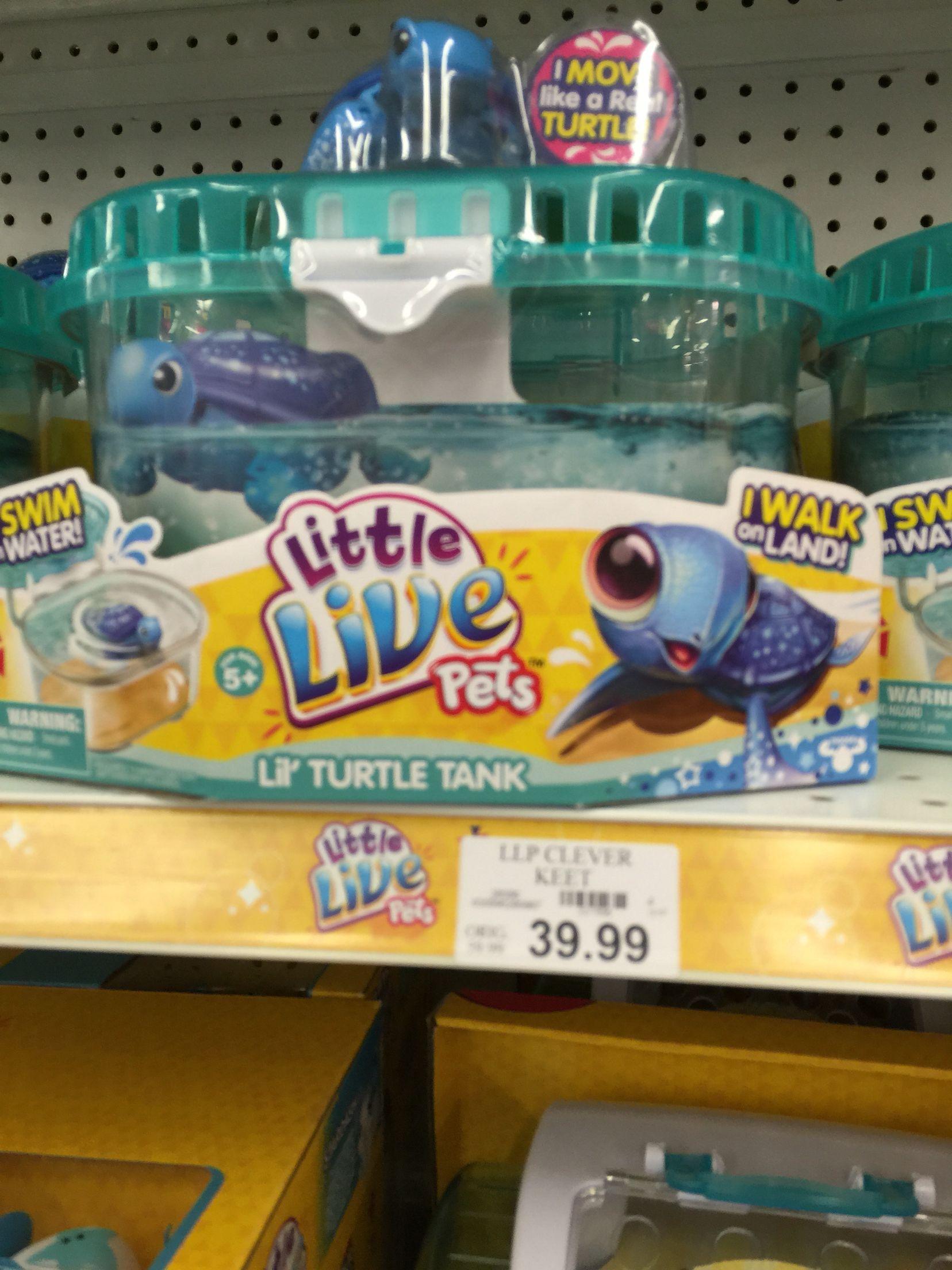 Little Live Pets Turtle Toys R Us Little Live Pets Pet Turtle