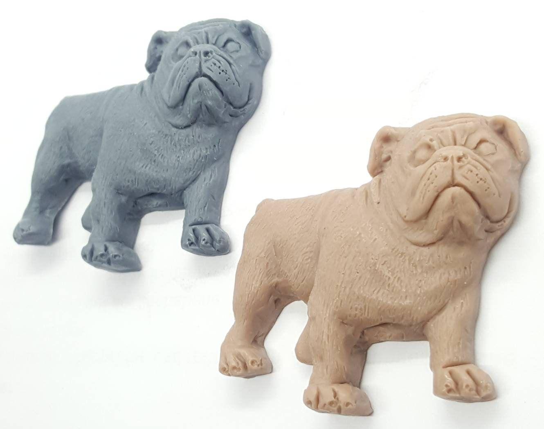 2x Englische Bulldogge Seife Oeb Oster Gast Geschenk Idee Geburtstag Kind Ostern Badezimmer Bad Deko Gaste Hunde Gaste Seife Mitbringsel English Bulldog Dog Sculpture Dog Breeds