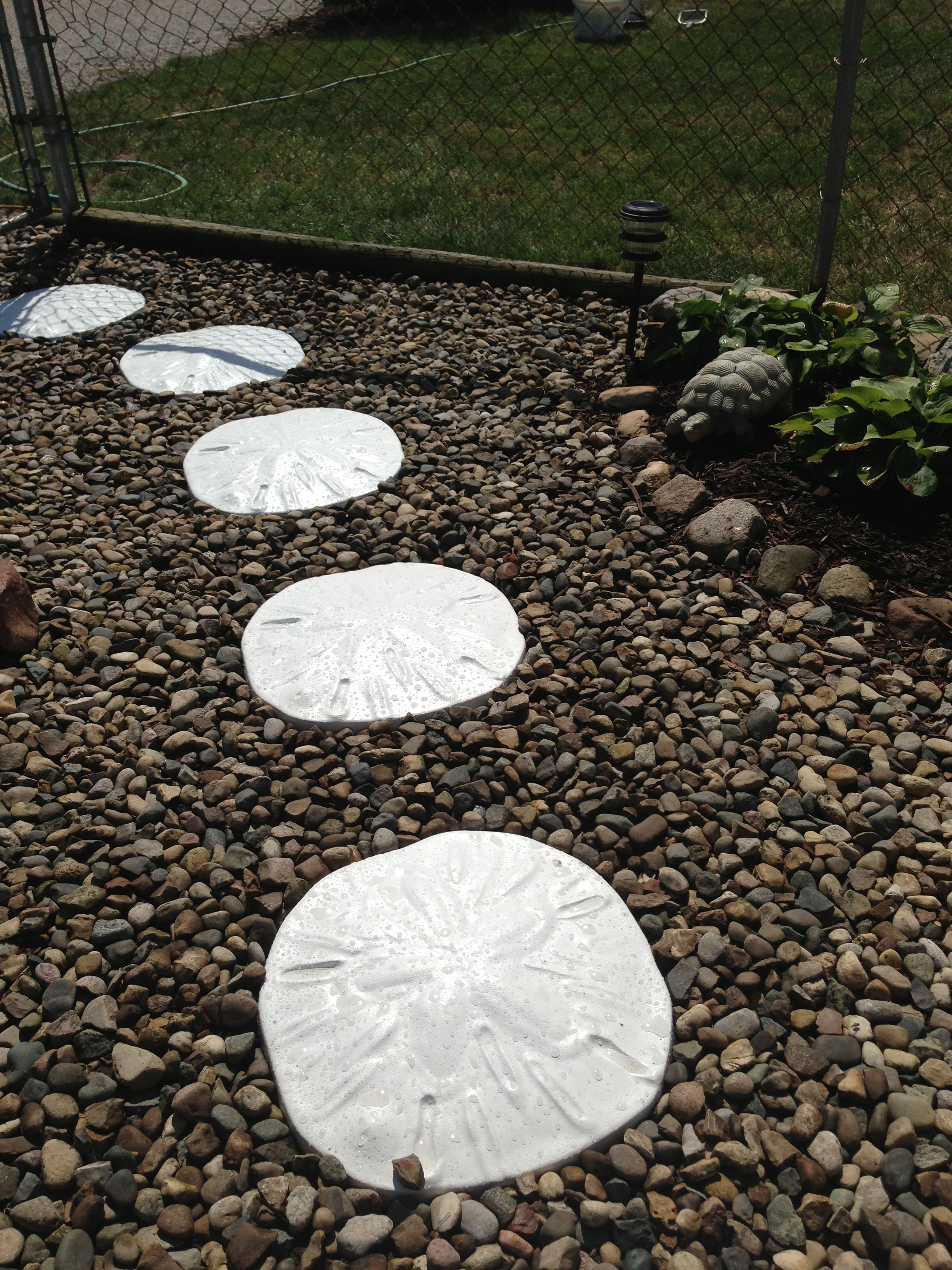 Sand Dollar Stepping Stones Remind Me Of The Beach Dollars Backyard Patio