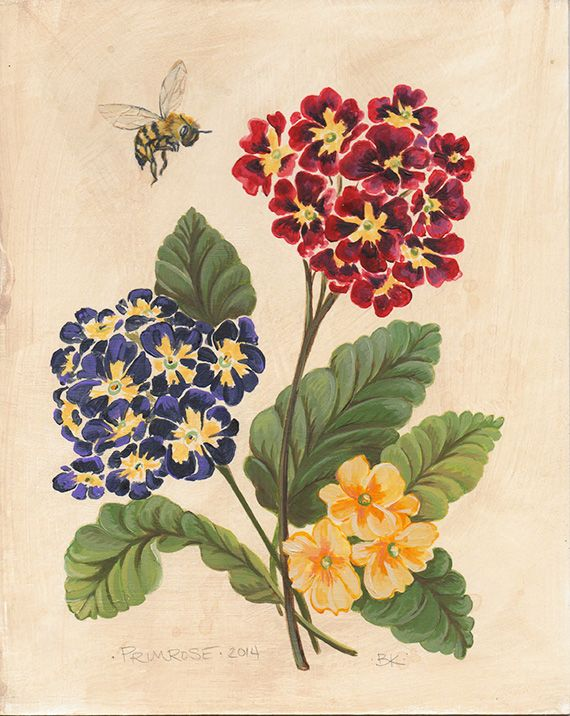 Vintage inspired Primrose and honey bee painted in acrylic on card stock. © Brooke Kent For prints paintings and comissions visit http://www.brookekent.etsy.com #may #spring #flowers #honey #bees #flora #vintage #art #botanical #prints #paintings #botany #garden #bouquet