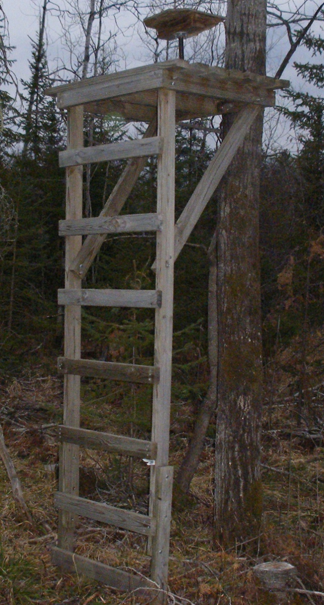 9 free diy deer stand plans for Free tree stand