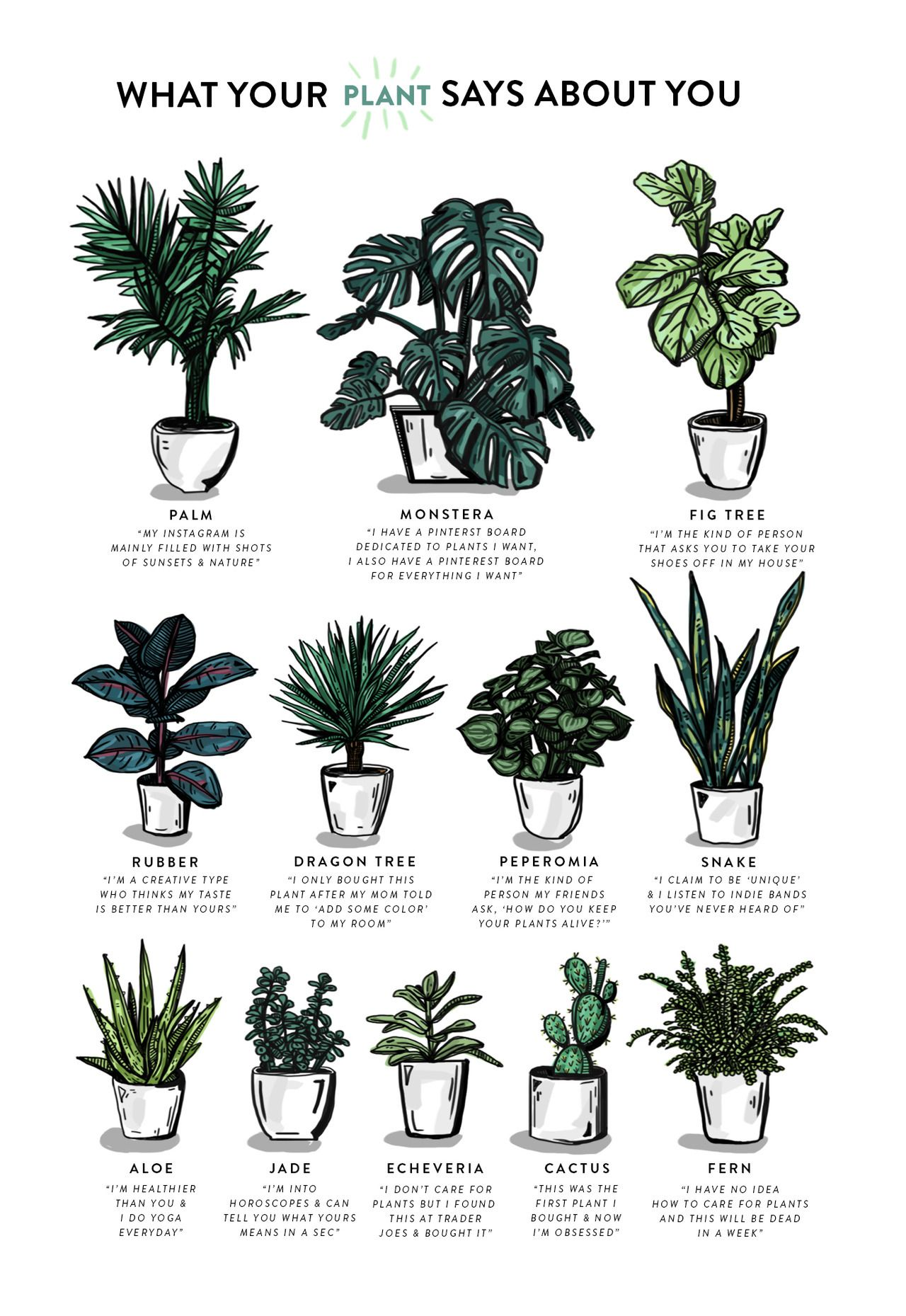Kellymalka What Does Your Plant Say About You Zoom Zoom Sry For Small Type Wanted To Include All The Plants Plants Indoor Plants House Plants