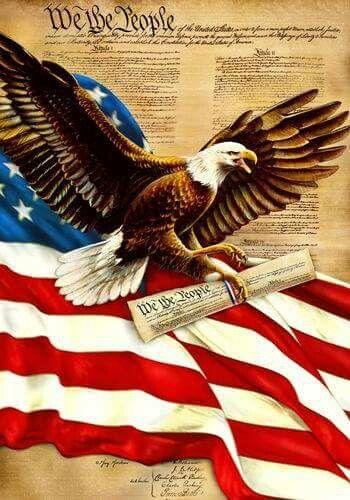 Pin By John Bayless On Patriotic Pride Patriotic Pictures Patriotic Garden Flag American Flag Eagle