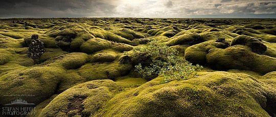 Inspiring Photography by Stefan Hefele