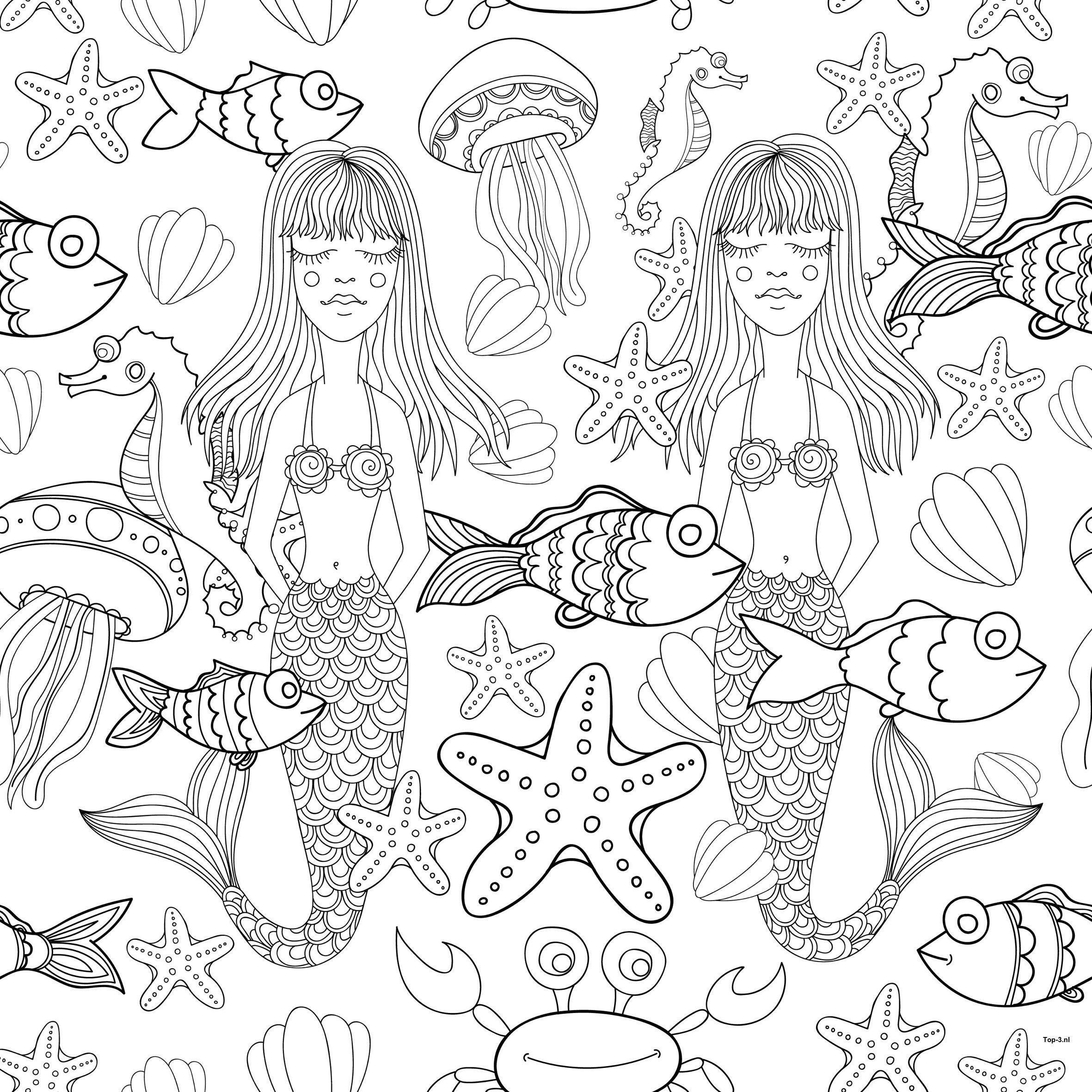 Kleurplaten Prinses Sprookjes Zeemeermin Top 3 Kado En Feesttips Kleurplaten Sprookjes Zeemeermin Top