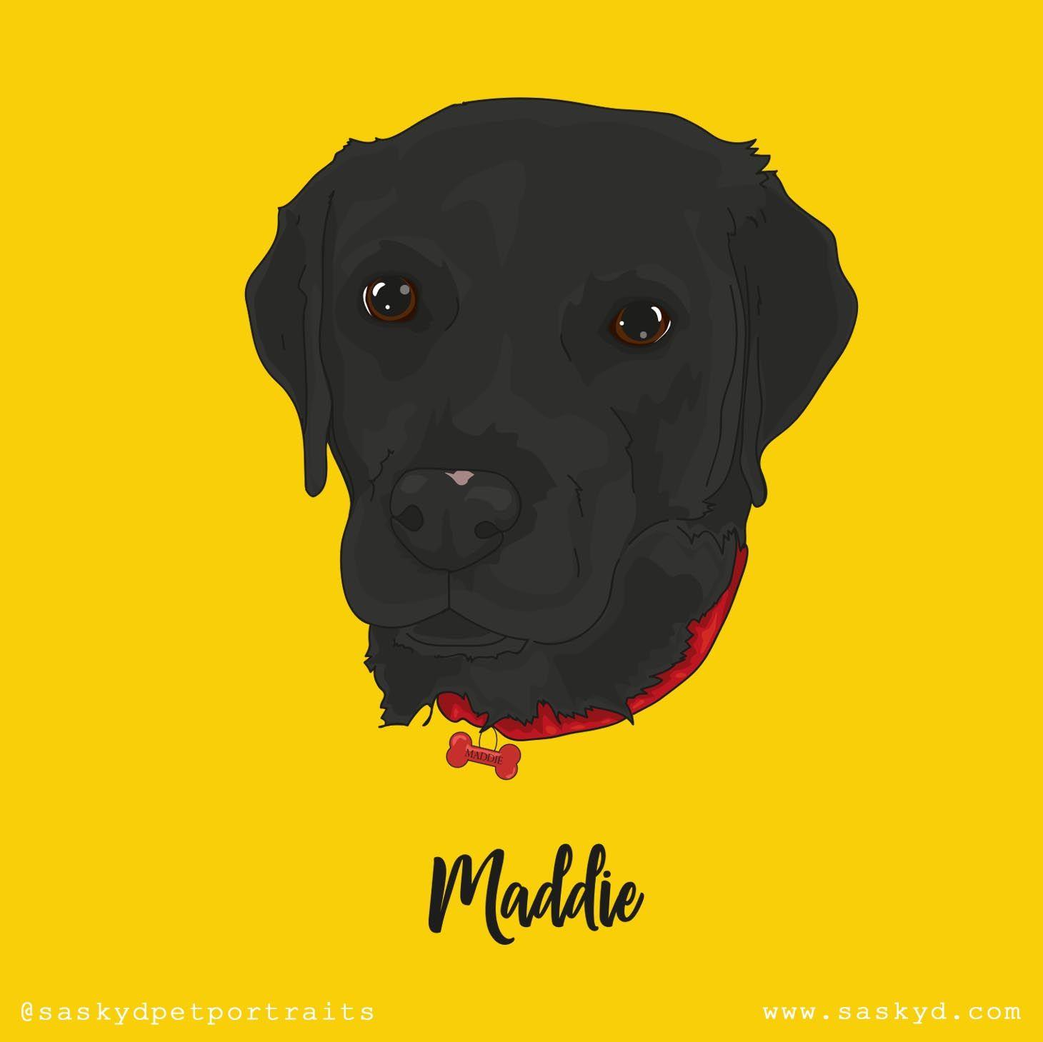 Maddie Custom Dog Head Portrait On A Yellow Background Go To Www Saskyd Com For More Details Makes A Perfect Gi Custom Dog Animal Art Prints Dog Portraits