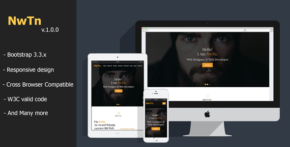 Nwtn  ResumeCvVcard Personal Portfolio Html Template  Personal