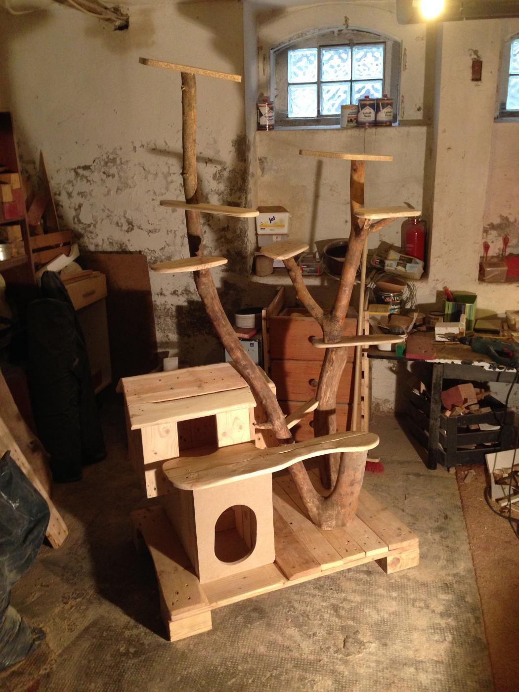erster rohbau katzenkratzbaum und katzenh tte aus palettenholz borkenk fer sten. Black Bedroom Furniture Sets. Home Design Ideas