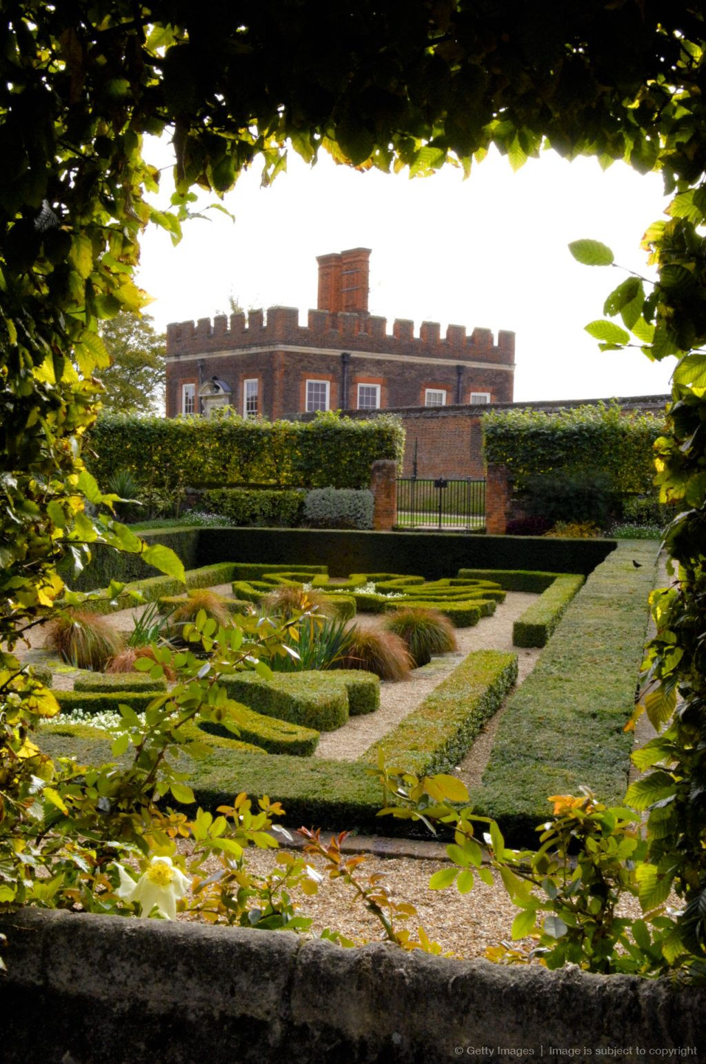 Roses In Garden: Image Detail For -England, London, Hampton Court Palace