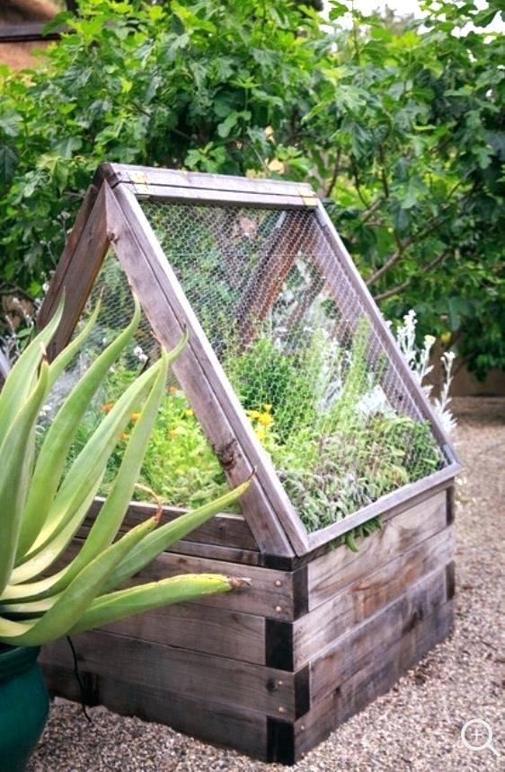 How do you shade your fruit trees or veggie garden ... |Vegetable Garden Screen