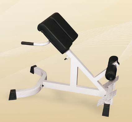45 degree incline hyperextension bench  at home workouts