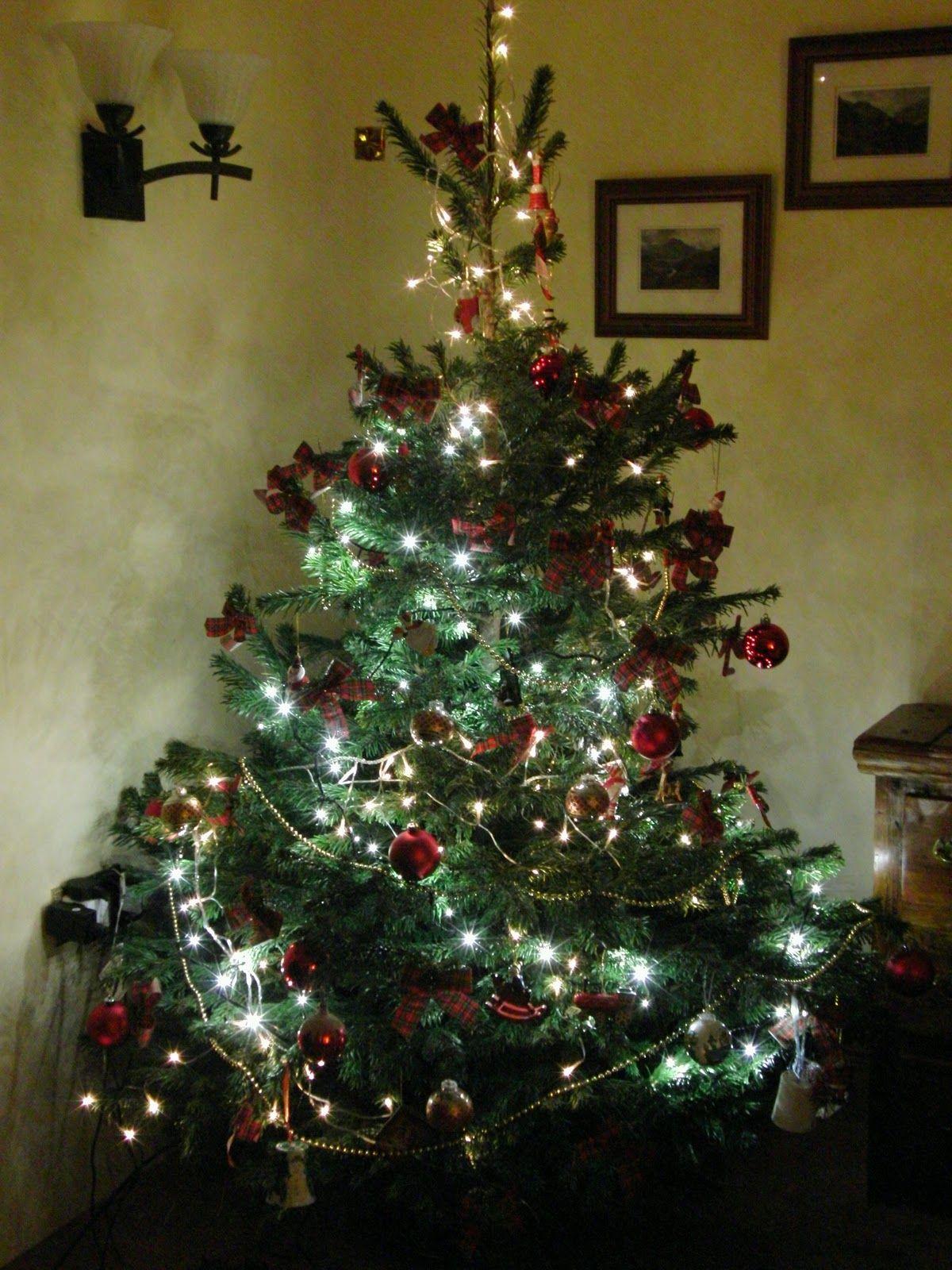 37 Fancy Christmas Tree Decorations Ideas | Christmas Decorations ...