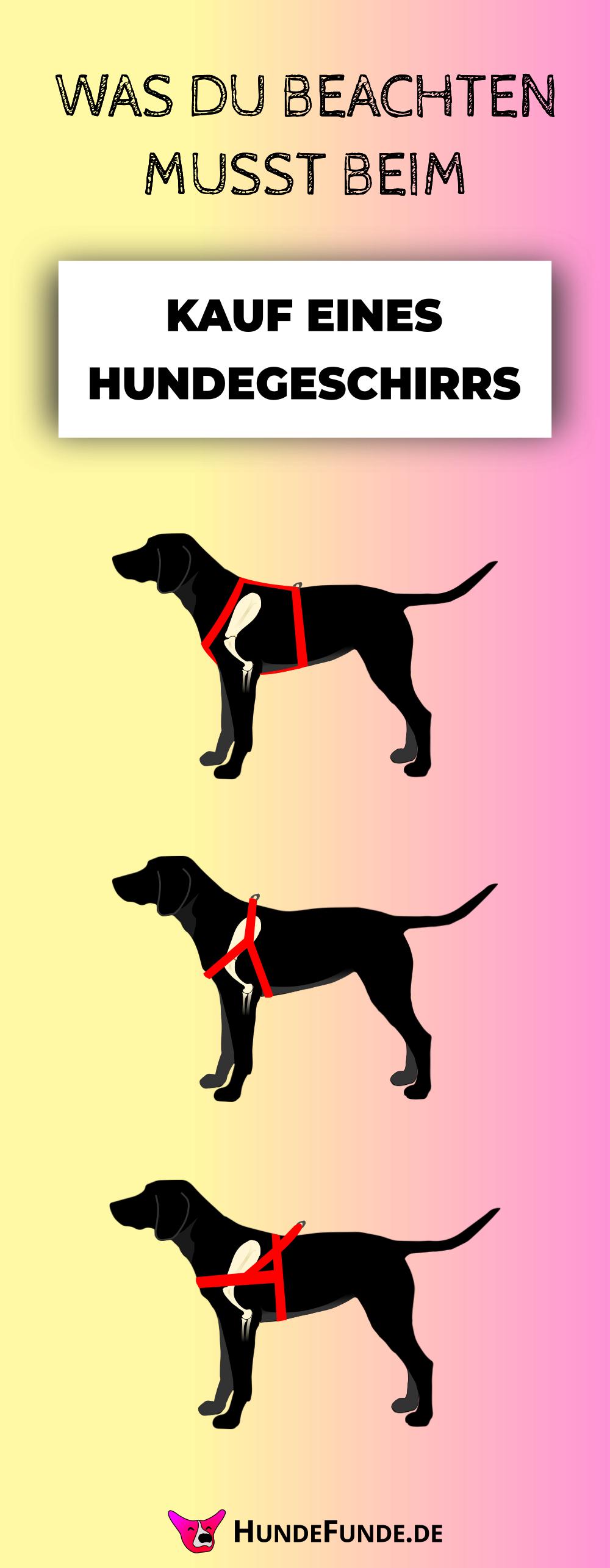 Das Optimale Hundegeschirr Auf Was Du Achten Musst Hundegeschirr Hunde Hundeprodukte