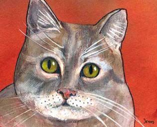 serie cats