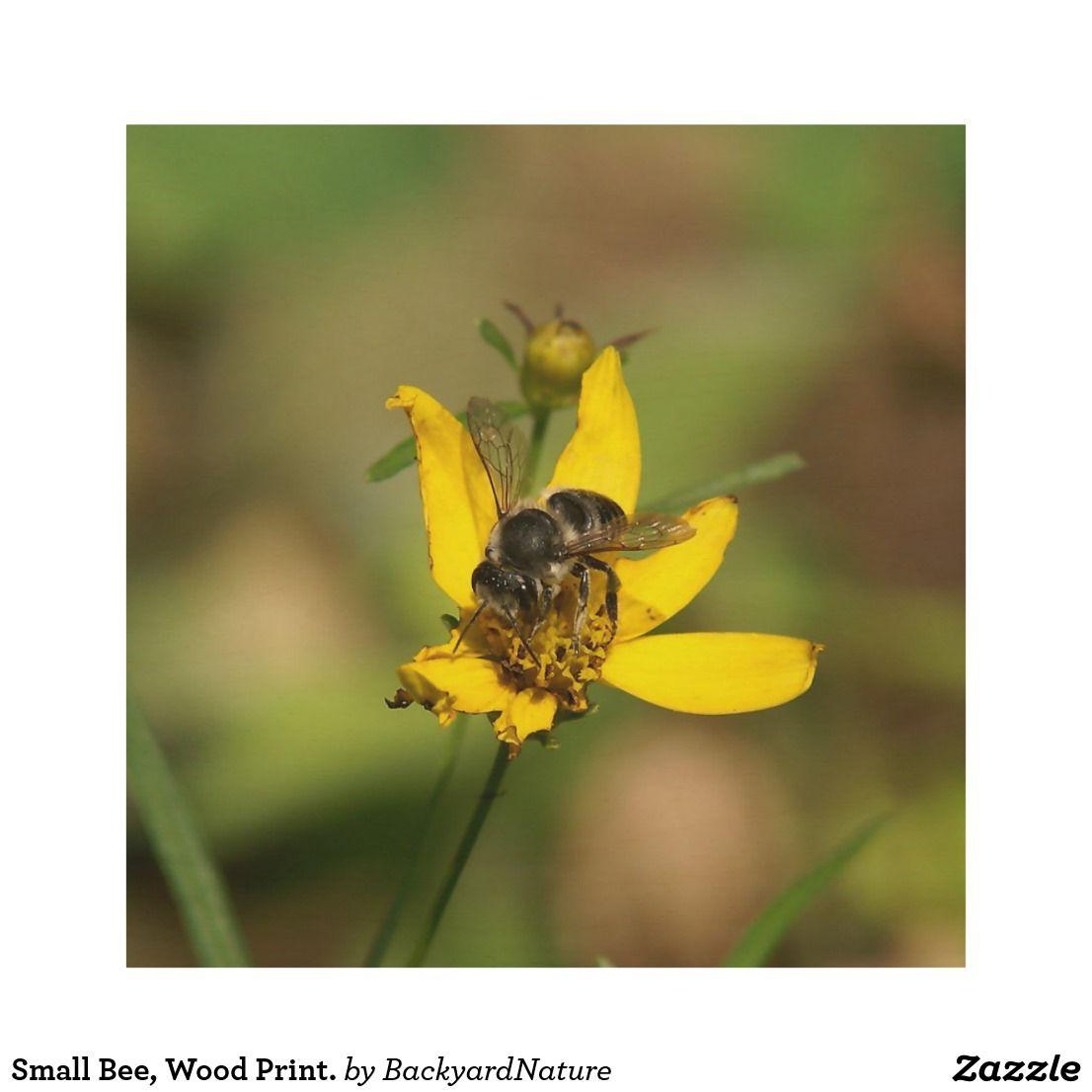Small Bee, Wood Print. Wood Wall Art | Small bees