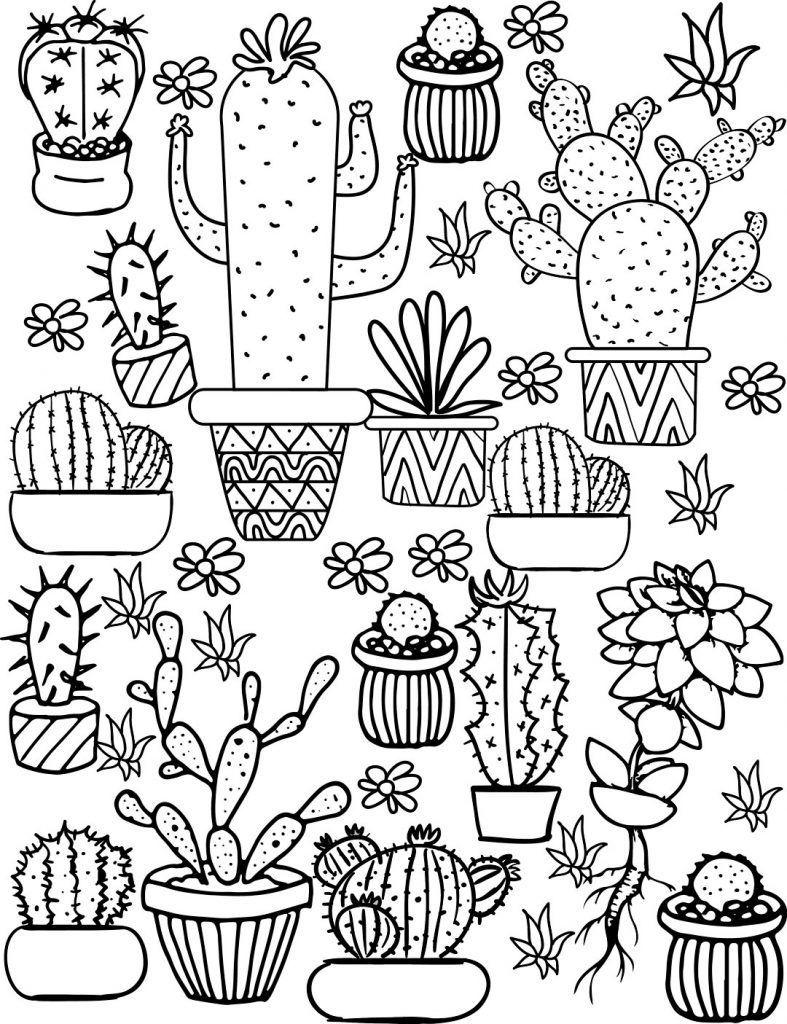 Cactus And Succulent Coloring Page Cactus Tekening Gratis Kleurplaten Doodle Ideeen