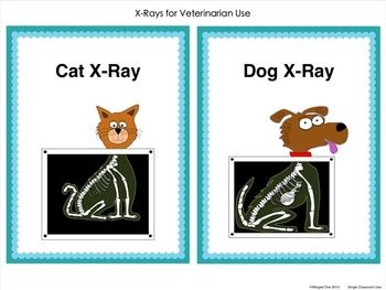 Pet Vet Center - Pet X-Rays, Dr. Sign, Examination Cards, Examination Room Mini Signs, Vaccination Certificates $
