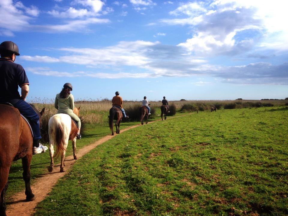 Camí de Cavalls tiene 185 km, divididos en 22 etapas. Cada tramo ofrece un  espectacular paisaje y un montón de rincones idílicos de Menorca.   És un trazado mágico y cargado de historia. Son Bou rutas a caballo te ofrece la posibilidad  de descubrir Camí de Cavalls a lomos de un caballo y viajar al pasado, cuando los militares vigilaban la isla de los piratas a caballo.