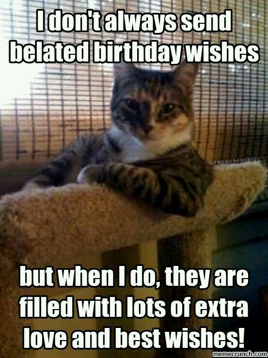 Funny Belated Birthday Wishes Beautiful 20 Best Happy Belated Birthday Memes Cat Memes Cute Cat Memes Funny Cat Pictures