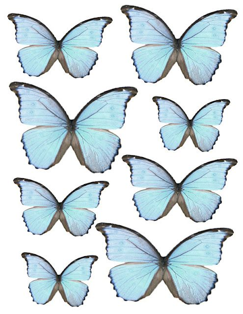image about Printable Butterflies titled printable erflies - What A Eye-catching Mess Sbooking