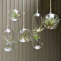 13+ Hanging glass balls for decor ideas